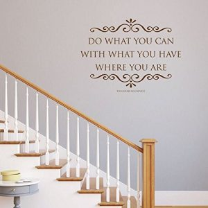"""Do What You Can With What You Have Where You Are"" -  Theodore Roosevelt"