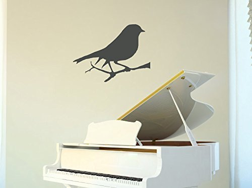 Bird Wall Decals Vinyl Decor