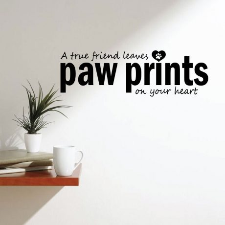 Animal Friends Wall Decals - Animal Wall Decor