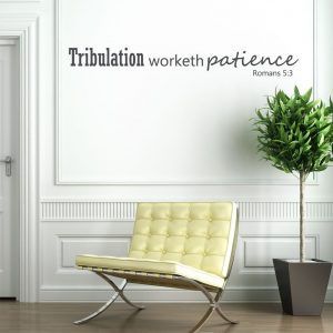 Bible Verse Wall Decals - Romans 5:3 - Tribulation Worketh Patience - Scripture Wall Art