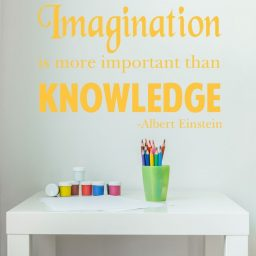 Quote Wall Decals - Imagination is More Important Than Knowledge