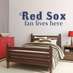 Red Sox Fan Boston Baseball Sports Team